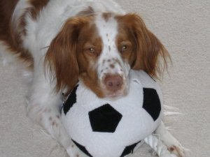 Sadie with Soccer Ball